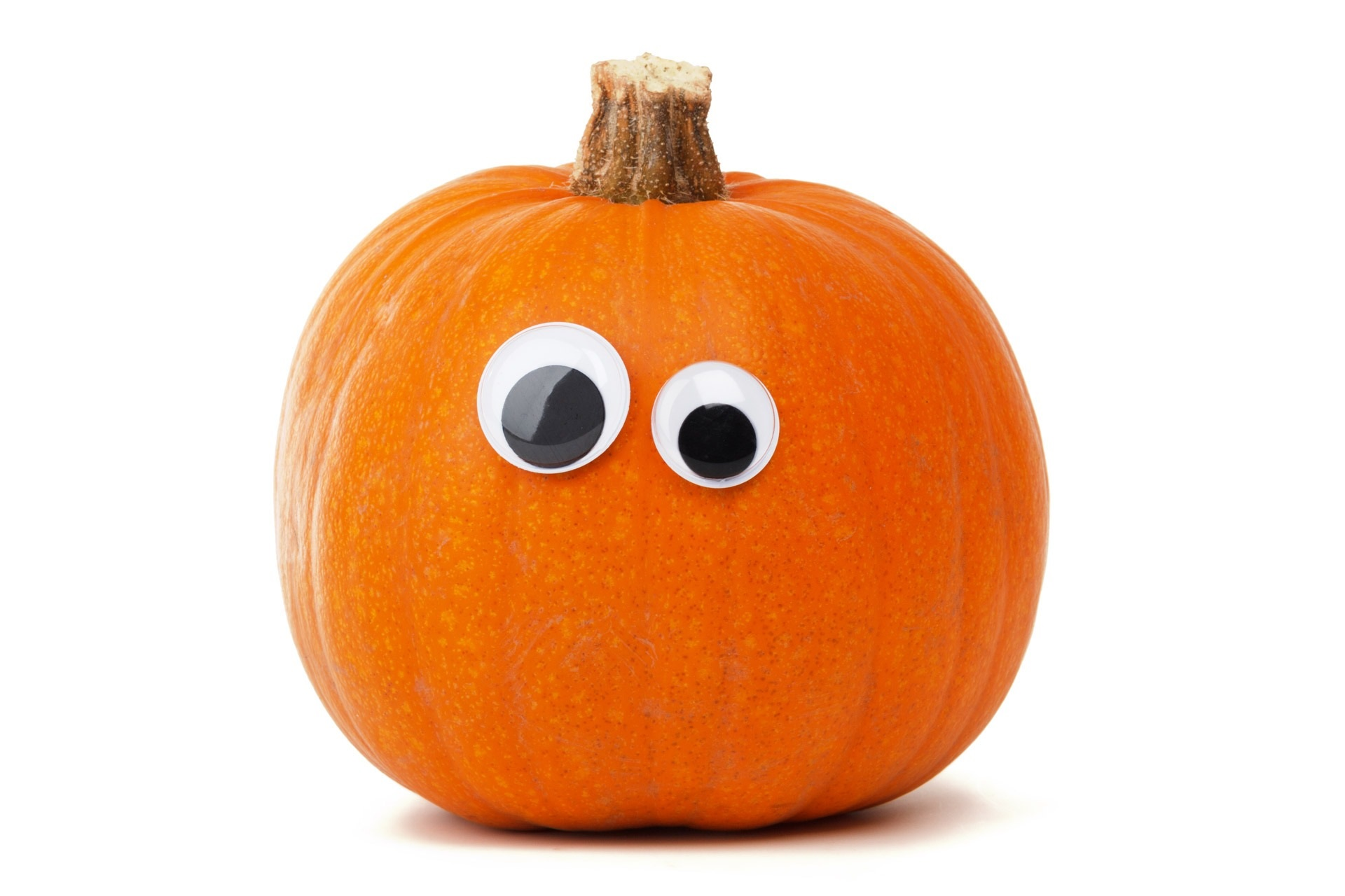 1697 Free Pumpkin Carving Stencils Patterns and Ideas
