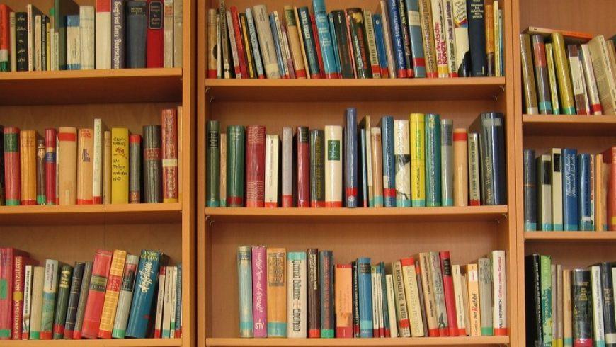Primaverinha dos livros