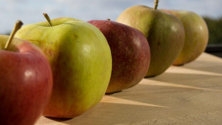 Bolo caprichado de maçã