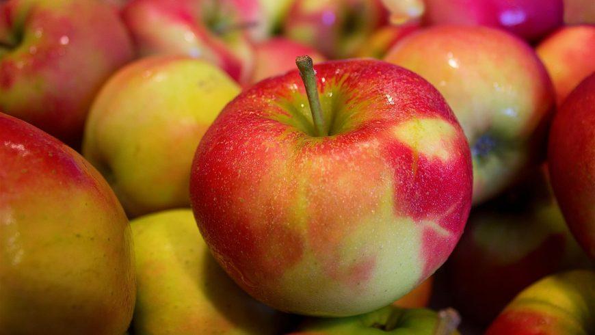 Amamentação e transição alimentar